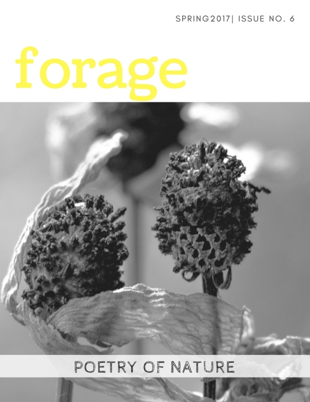 forage(7)